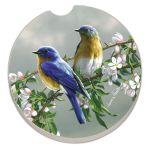 BLUE BIRDS AUTO COASTER