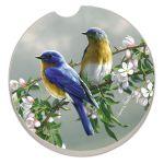 BLUE BIRDS AUTO COASTER