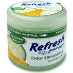 Refresh Your Car Scented Gel Air Freshener (4.5 oz.), Cucumber Melon