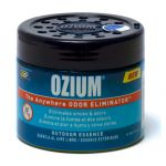 Ozium Gel 4.5 oz Outdoor Essence
